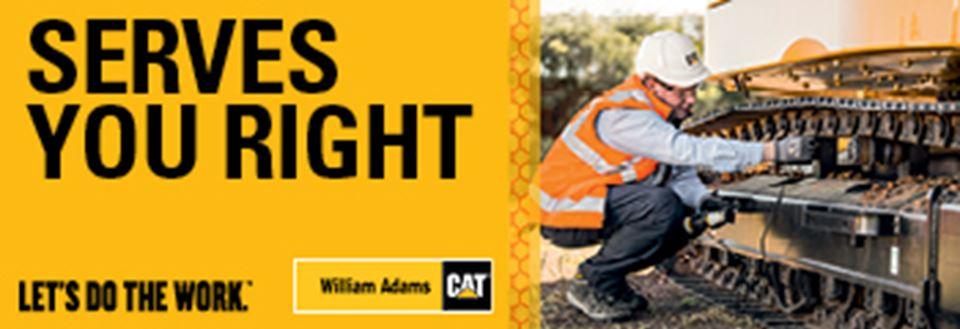 Promotions   William Adams Cat